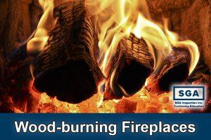 SGA wood-burning fireplace inspection